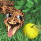 تحميل لعبة الثعبان AxySnake للكمبيوتر من ميديا فاير مجاناً
